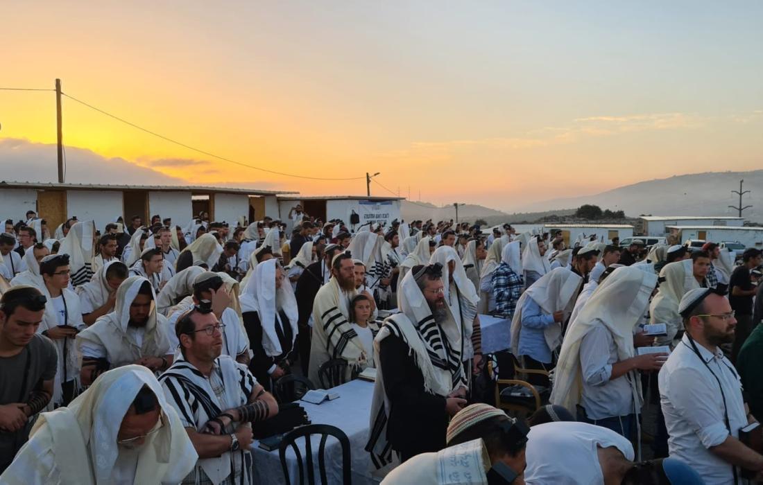 مئات المستوطنين بقيادة حاخام متطرف يقتحمون جبل صبيح بنابلس وسط عمليات استفزازية