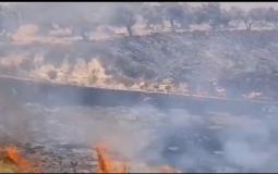 مستوطن يحرق أراضي زراعية في نابلس
