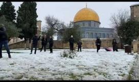 مقدسيون يمرحون في الثلوج ...