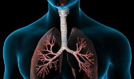 4 تمارين لتقوية الرئتين وتحسين التنفس