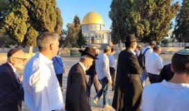 مستوطنون في المسجد الاقصى.jpg
