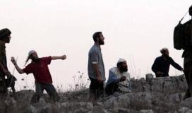 مستوطنون - حجارة - رشق
