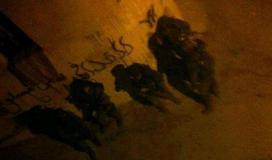 جنود الاحتلال في جنين
