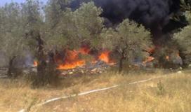 """اندلاع حريق في أحراش المجلس الإقليمي بـ""""غلاف غزة"""""""