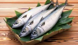إليك فوائد تناول السمك والماكولات البحرية لصحة الانسان والقلب والسكري والبشرة