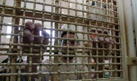 معتقل