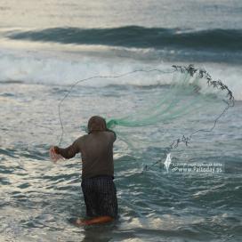بالصور:صياد فلسطيني يلتقط رزقه من شباك صيده في ساعات الصباح الأولى