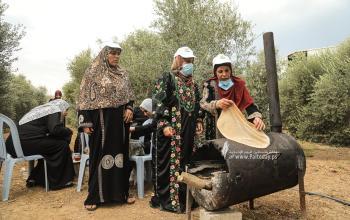 بالصور:فلسطينيات يعددن الخبز على الصاج  خلال افتتاح موسم جني الزيتون بغزة